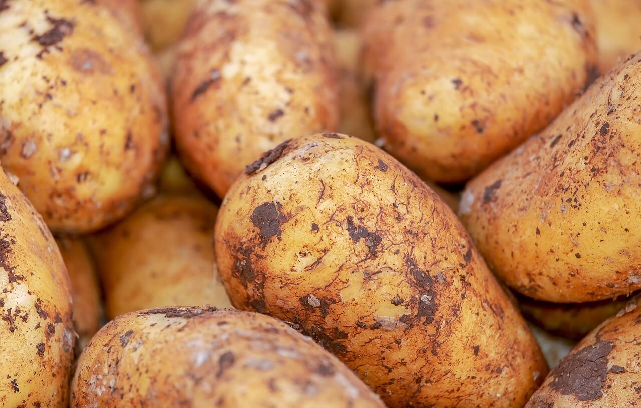 Kohlenhydrate bei der Ernährung sollten möglichst vermieden werden.